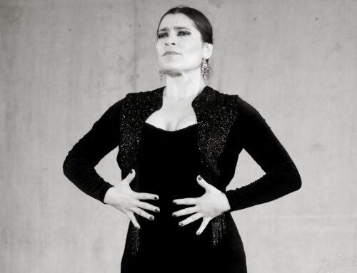 Son Flamenco